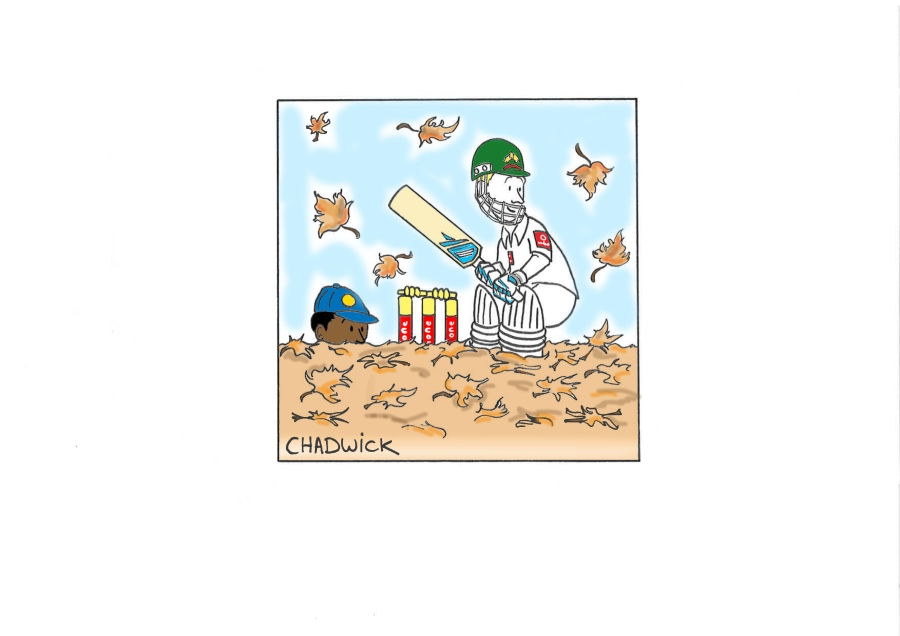 Leafy Cricket
