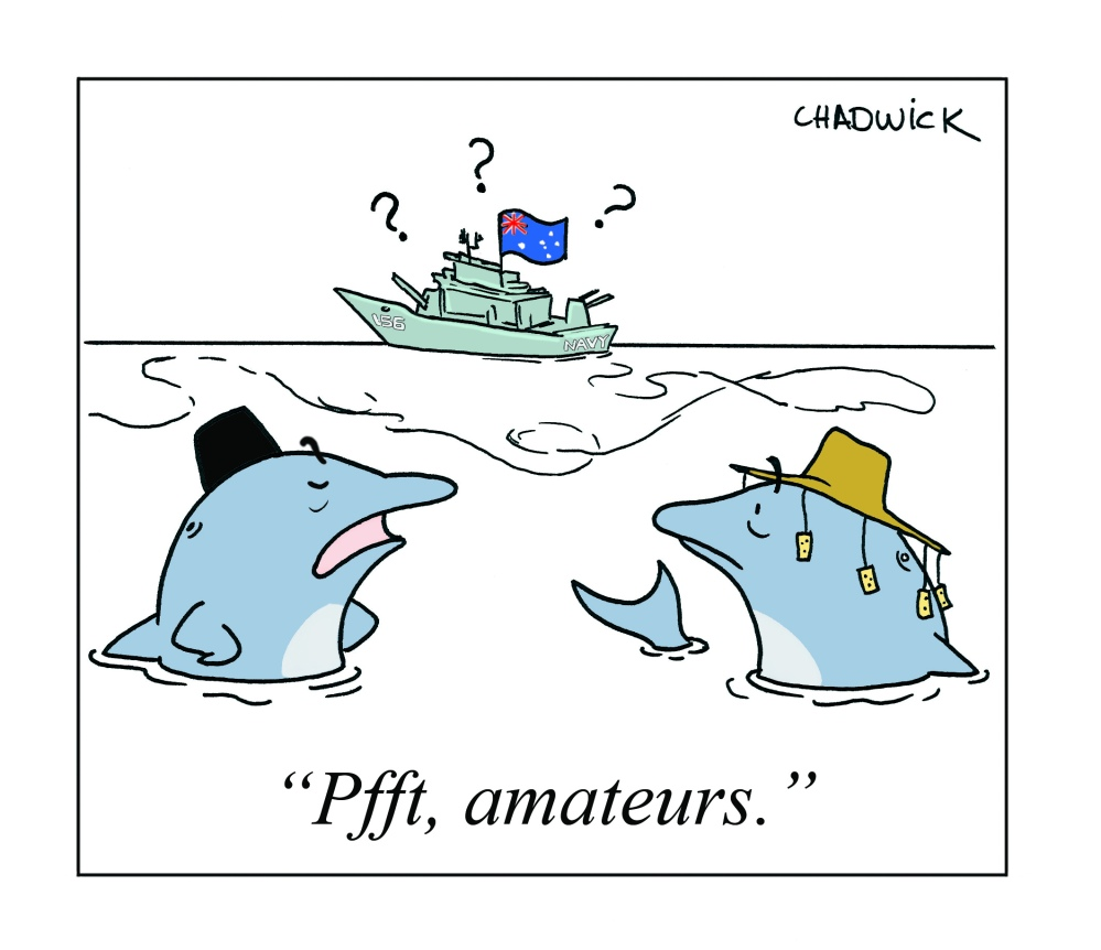 Navy Confusion